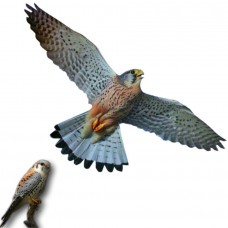 """Визуальный отпугиватель птиц """"Хищник 3"""" (40 x 80 см)"""